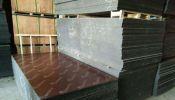 Phenolic Plywood / Board TREEWAY CLASS A . *UNBEATABLE* Performance